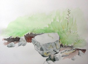 'Rocks and river bank, Treclastle road' watercolour and pencil on paper (June 2015)