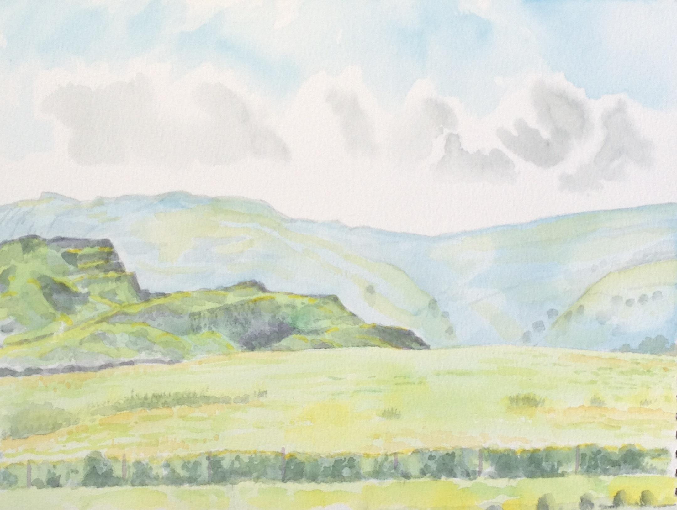 'Penwyllt' watercolour on paper (2013)