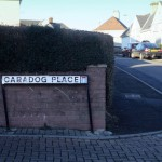 'Cofio Caradog: Caradog Place, Townhill, Swansea' photograph (21 December 2004)